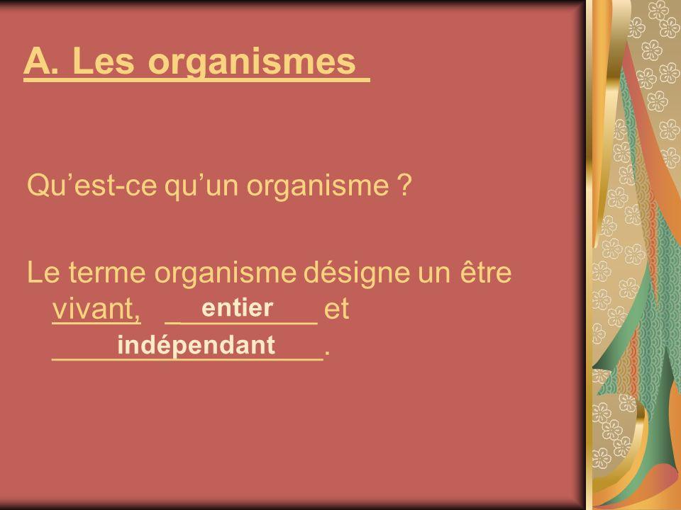 A. Les organismes Qu'est-ce qu'un organisme