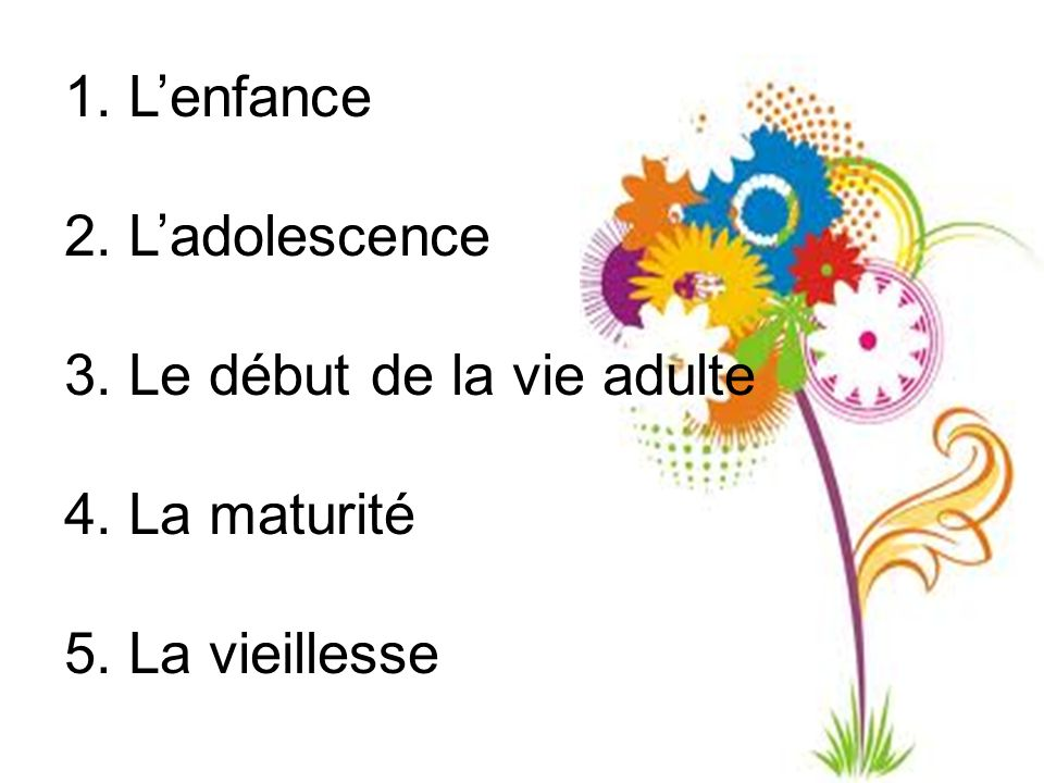 1. L'enfance 2. L'adolescence 3. Le début de la vie adulte 4. La maturité 5. La vieillesse