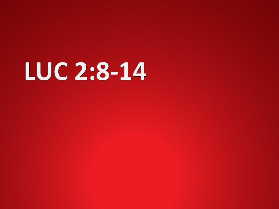 LUC 2:8-14