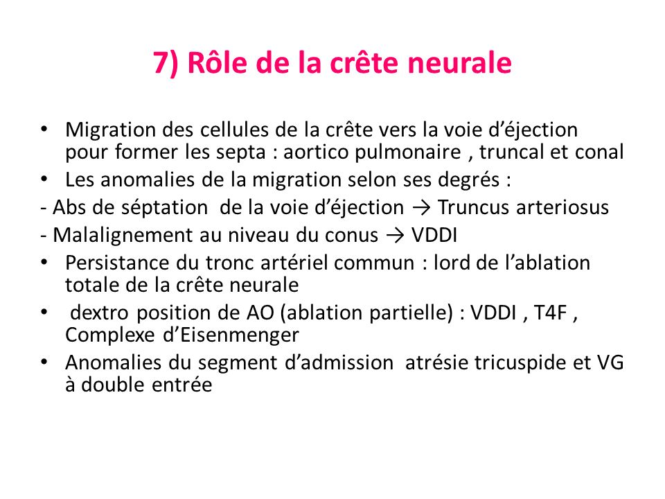 7) Rôle de la crête neurale