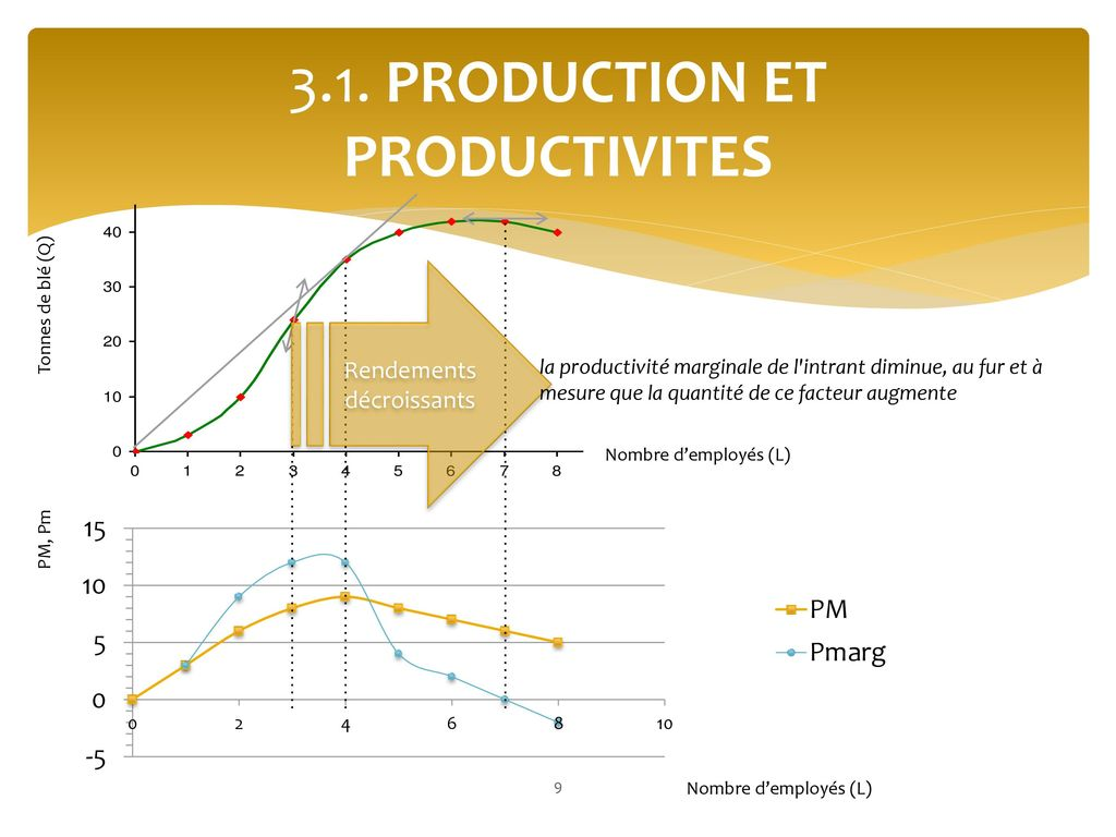 3.1. PRODUCTION ET PRODUCTIVITES