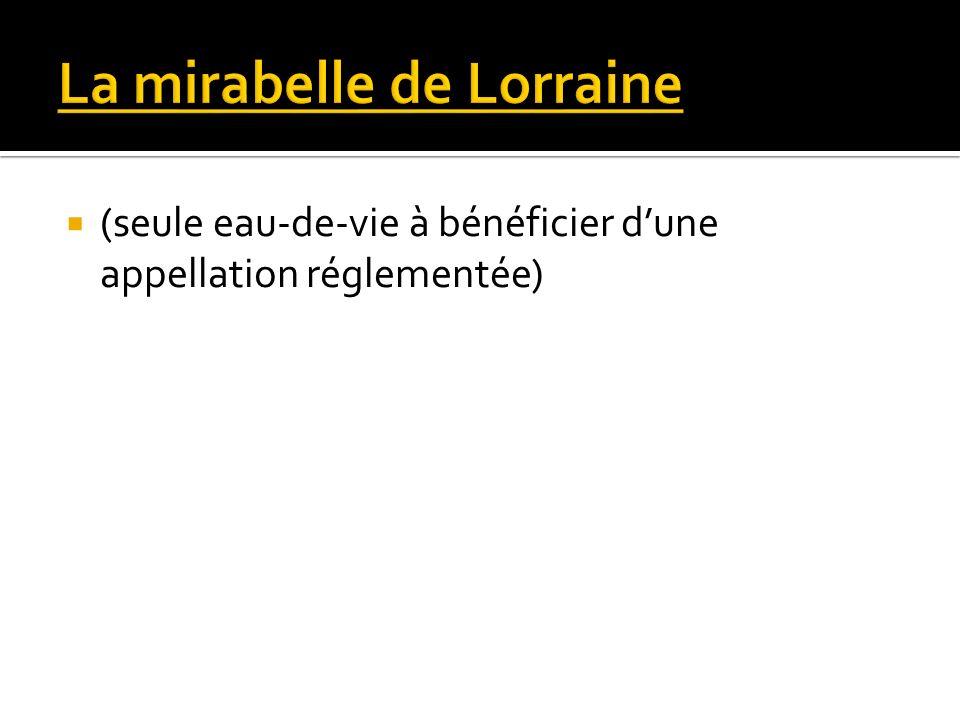 La mirabelle de Lorraine
