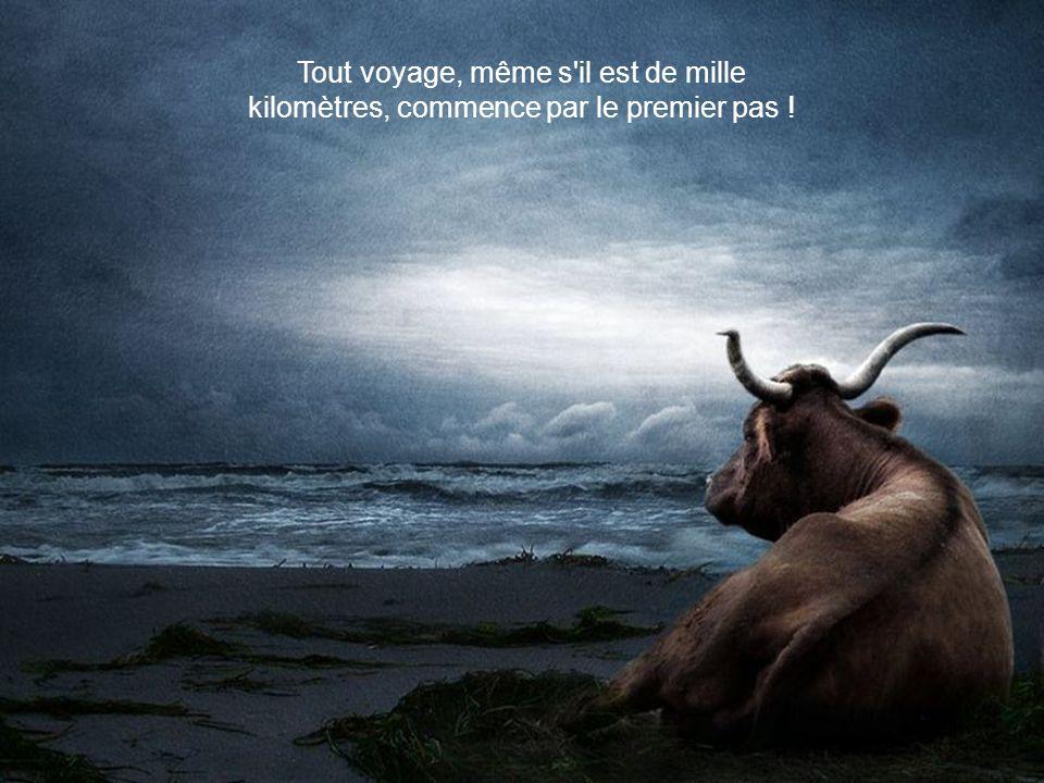 Tout voyage, même s il est de mille kilomètres, commence par le premier pas !