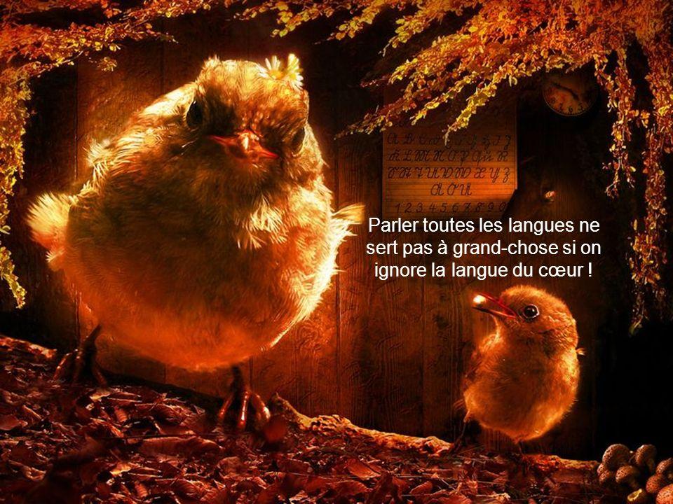 Parler toutes les langues ne sert pas à grand-chose si on ignore la langue du cœur !
