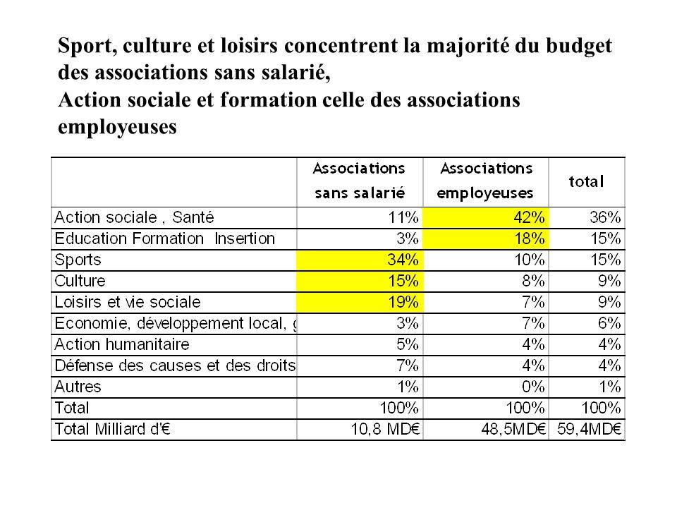 Sport, culture et loisirs concentrent la majorité du budget des associations sans salarié, Action sociale et formation celle des associations employeuses