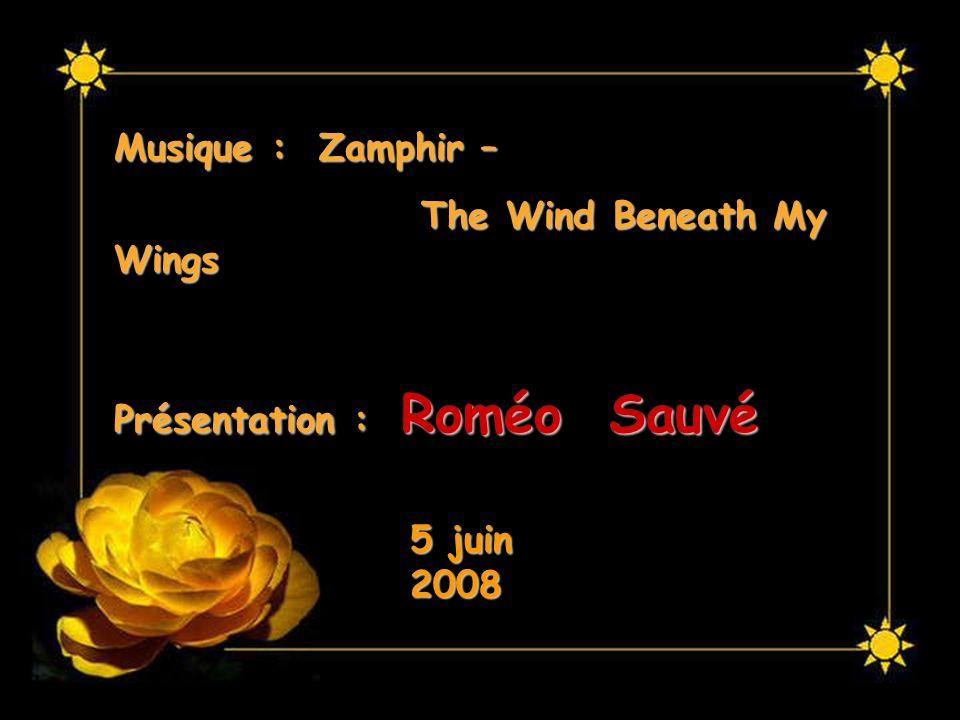 Musique : Zamphir – The Wind Beneath My Wings Présentation : Roméo Sauvé 5 juin 2008