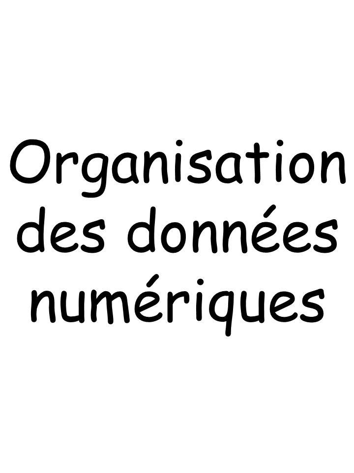 Organisation des données numériques
