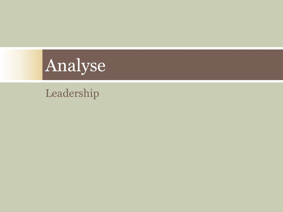 Analyse Leadership