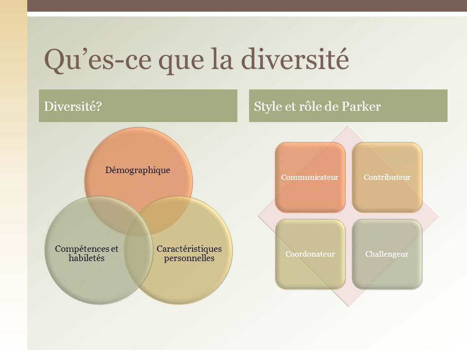 Qu'es-ce que la diversité
