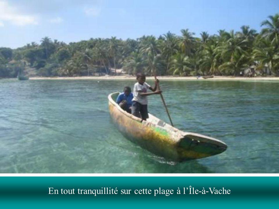 En tout tranquillité sur cette plage à l'Île-à-Vache