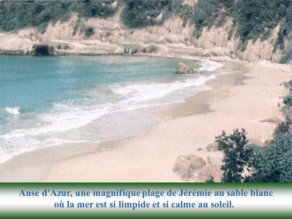 Anse d Azur, une magnifique plage de Jérémie au sable blanc où la mer est si limpide et si calme au soleil.