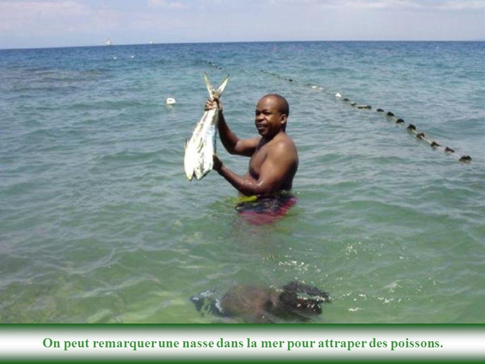 On peut remarquer une nasse dans la mer pour attraper des poissons.