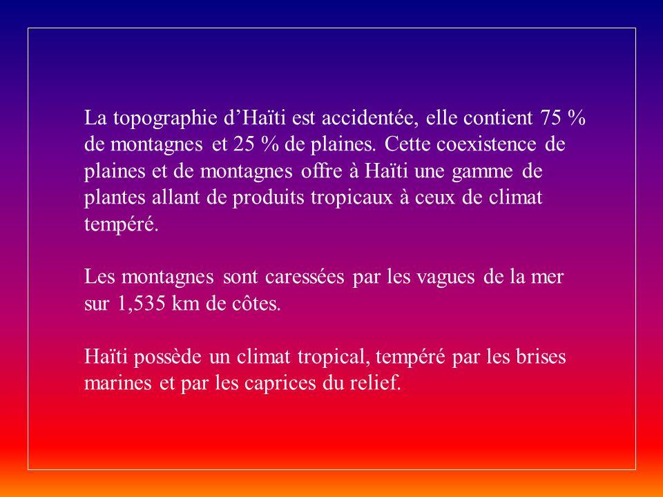 La topographie d'Haïti est accidentée, elle contient 75 % de montagnes et 25 % de plaines.
