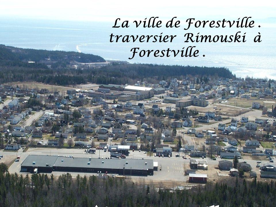 La ville de Forestville .