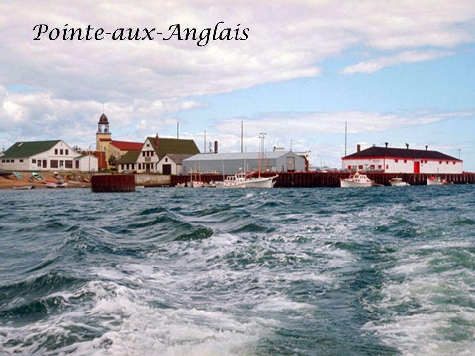 Pointe-aux-Anglais