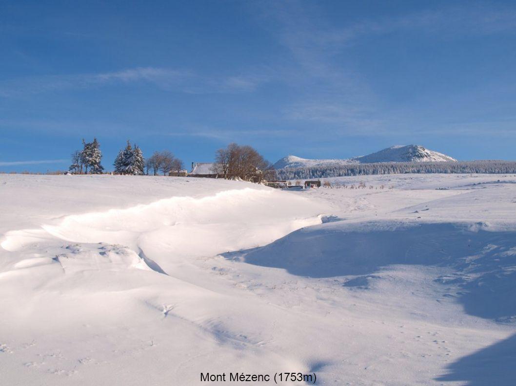 Mont Mézenc (1753m)