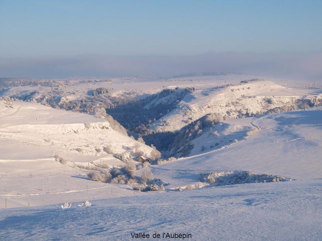 Vallée de l Aubépin