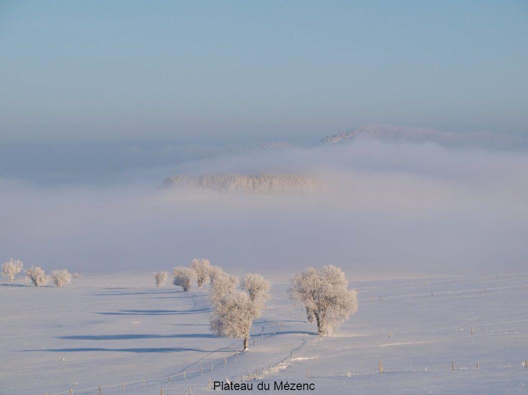 Plateau du Mézenc