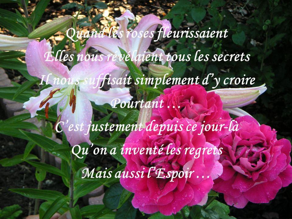 Quand les roses fleurissaient Elles nous révélaient tous les secrets