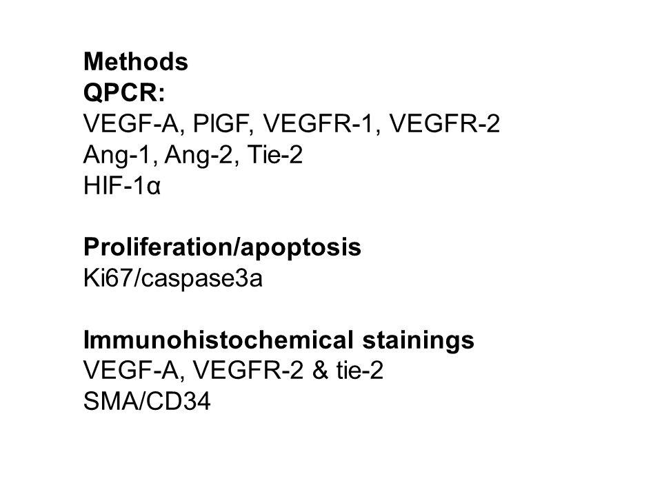 Methods QPCR: VEGF-A, PlGF, VEGFR-1, VEGFR-2. Ang-1, Ang-2, Tie-2. HIF-1α. Proliferation/apoptosis.