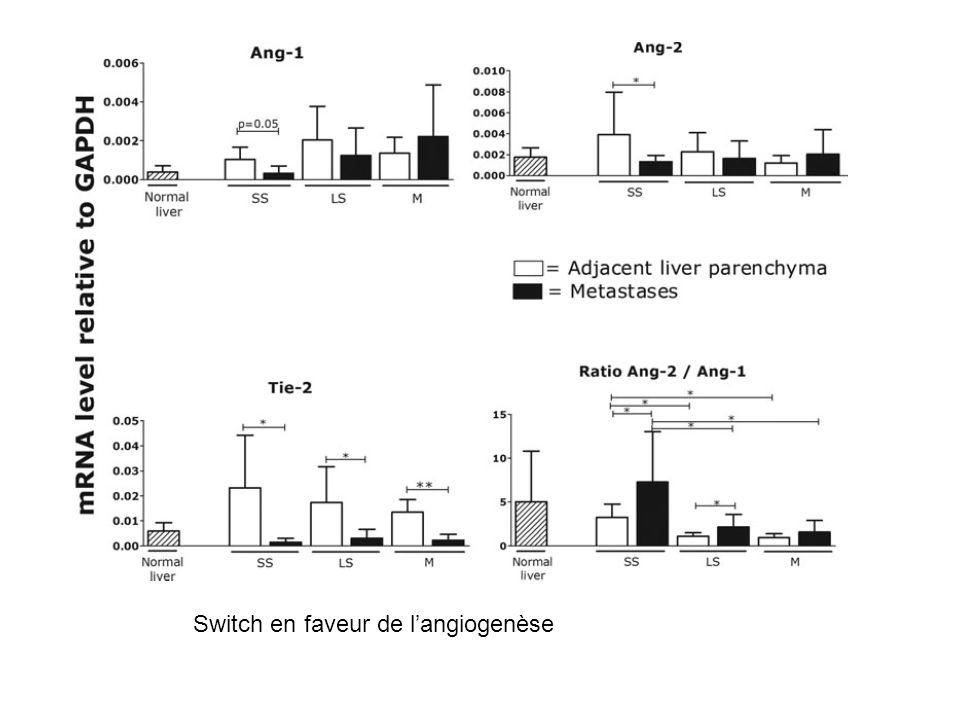 Switch en faveur de l'angiogenèse