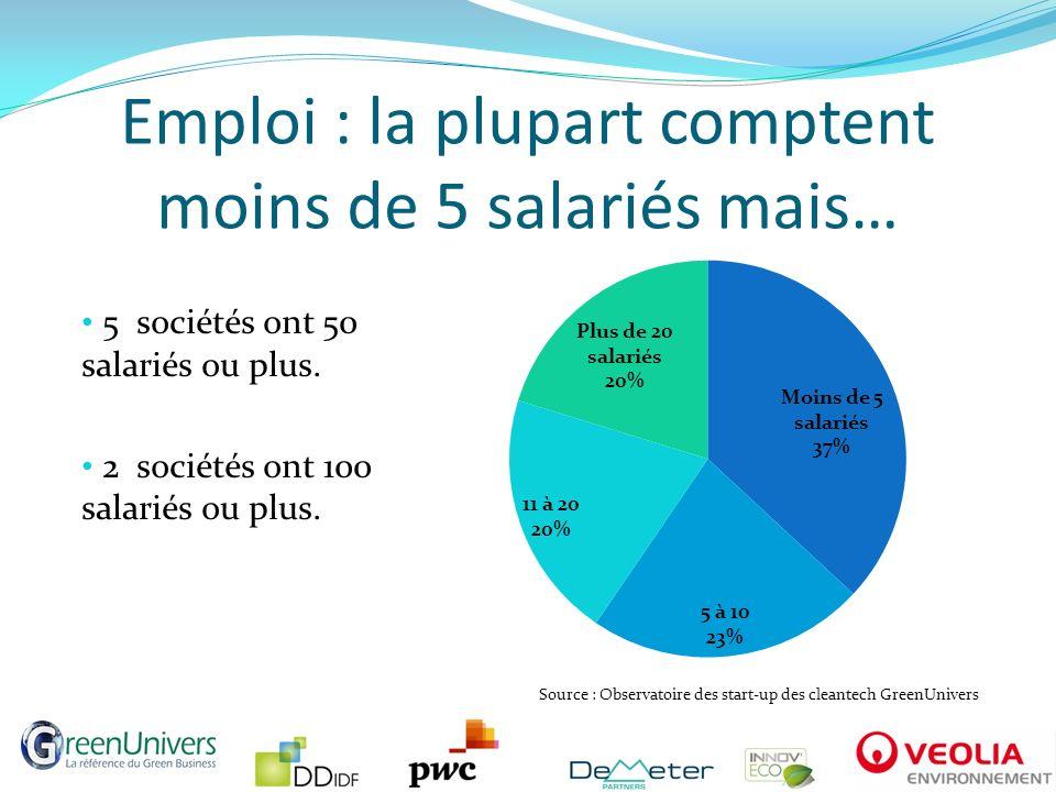 Emploi : la plupart comptent moins de 5 salariés mais…