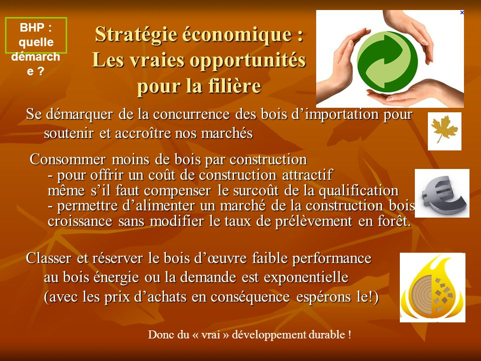 Stratégie économique : Les vraies opportunités pour la filière