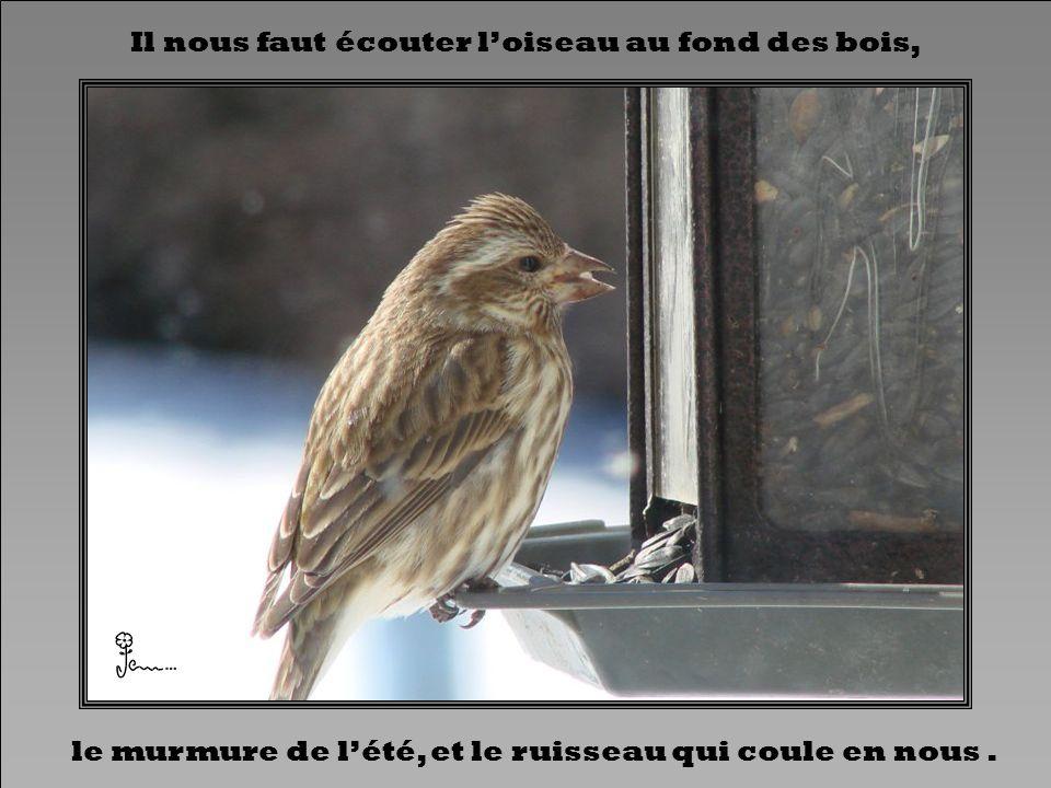 Il nous faut écouter l'oiseau au fond des bois,