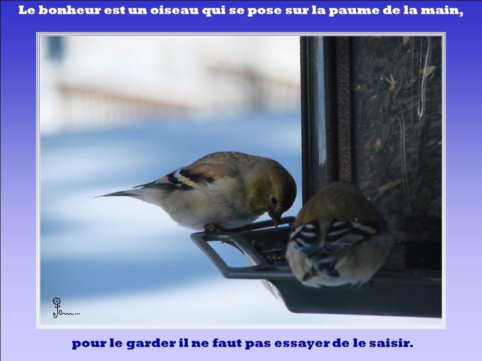 Le bonheur est un oiseau qui se pose sur la paume de la main,