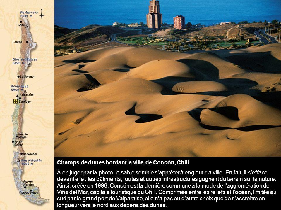 Champs de dunes bordant la ville de Concón, Chili