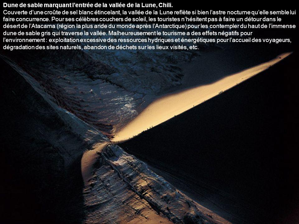 Dune de sable marquant l'entrée de la vallée de la Lune, Chili.