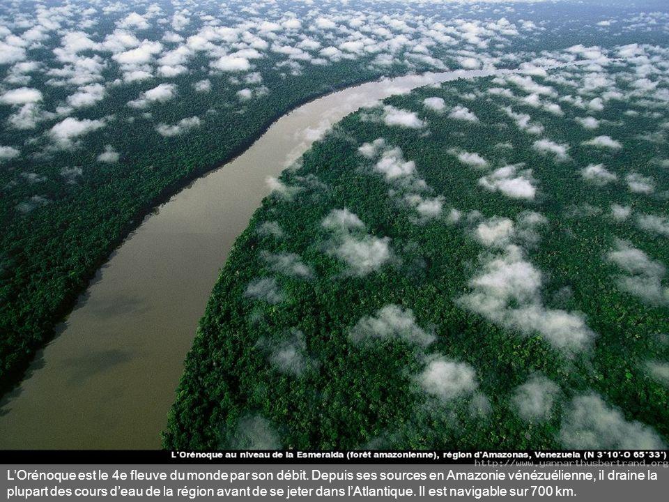 L'Orénoque est le 4e fleuve du monde par son débit