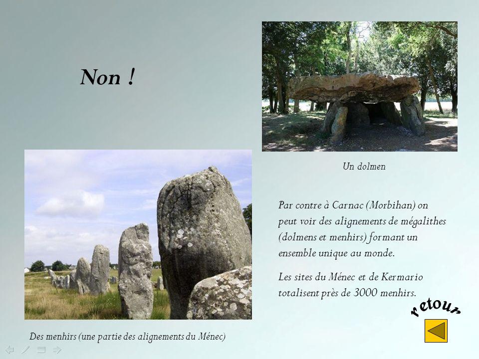 Non ! Un dolmen. Par contre à Carnac (Morbihan) on peut voir des alignements de mégalithes (dolmens et menhirs) formant un ensemble unique au monde.