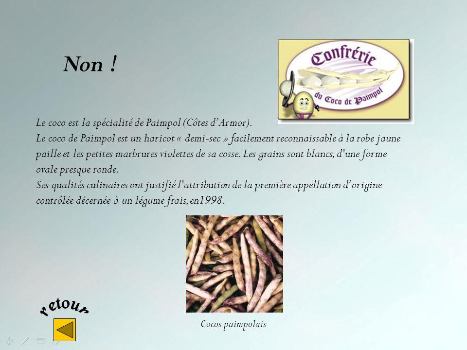 Non ! Le coco est la spécialité de Paimpol (Côtes d'Armor).