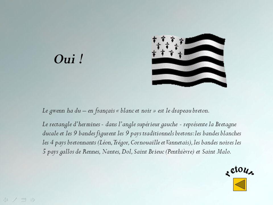 Oui ! Le gwenn ha du – en français « blanc et noir » est le drapeau breton.
