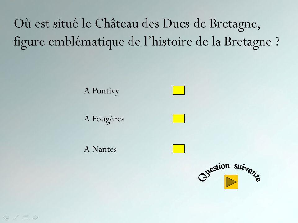 Où est situé le Château des Ducs de Bretagne, figure emblématique de l'histoire de la Bretagne