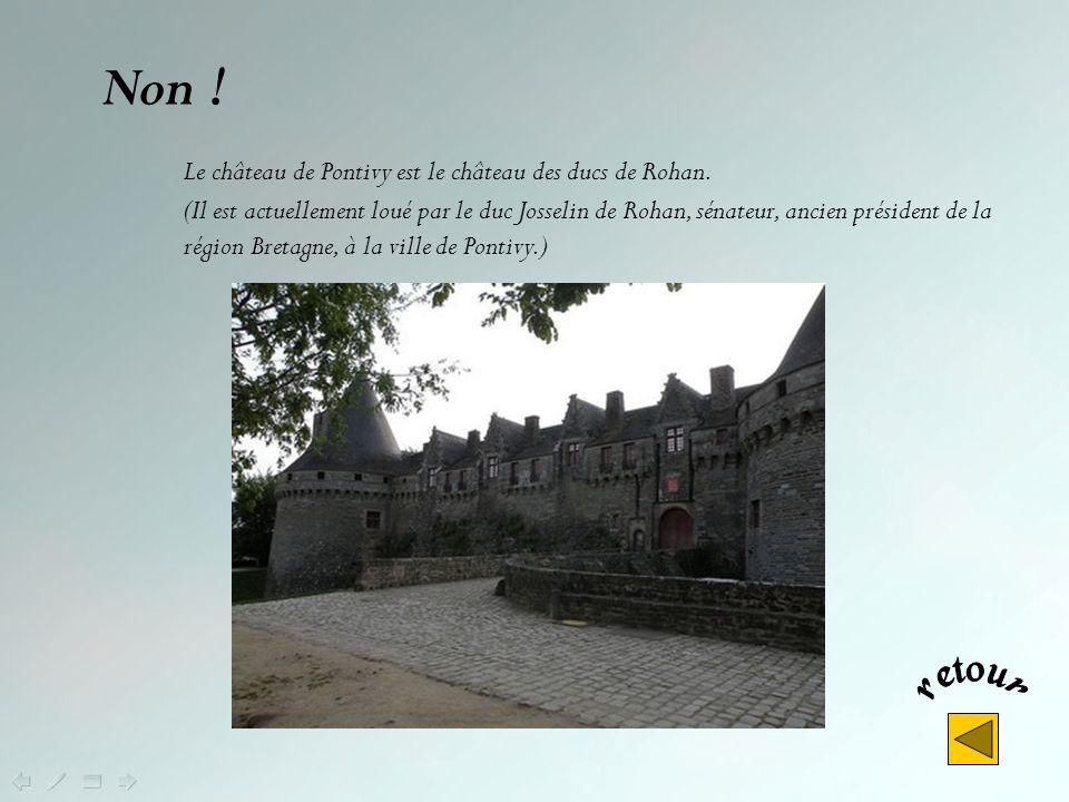 Non ! Le château de Pontivy est le château des ducs de Rohan.