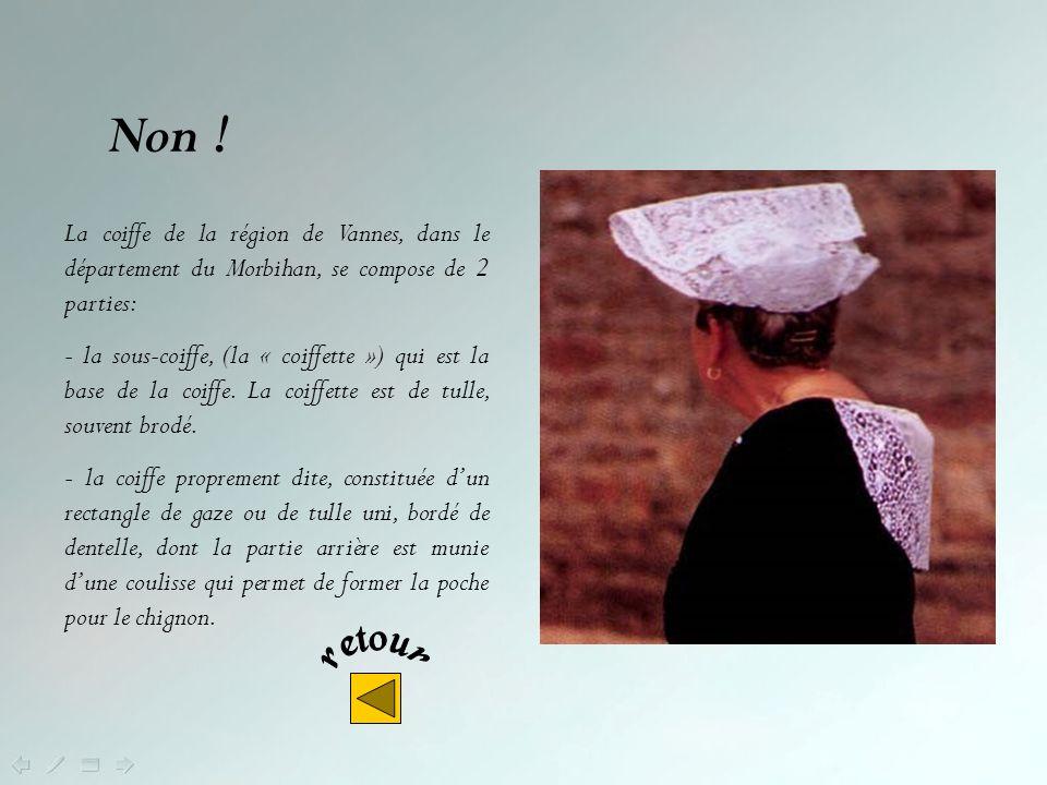 Non ! La coiffe de la région de Vannes, dans le département du Morbihan, se compose de 2 parties: