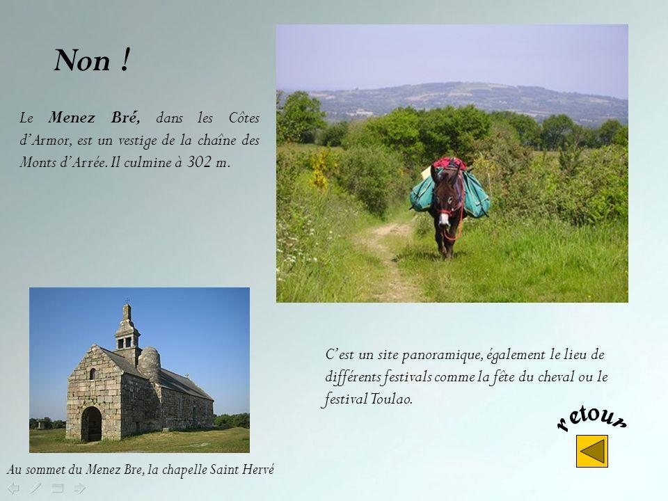 Non ! Le Menez Bré, dans les Côtes d'Armor, est un vestige de la chaîne des Monts d'Arrée. Il culmine à 302 m.