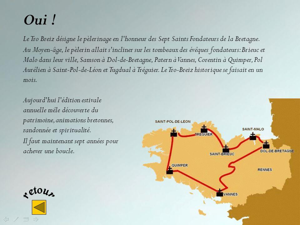 Oui ! Le Tro Breiz désigne le pèlerinage en l honneur des Sept Saints Fondateurs de la Bretagne.