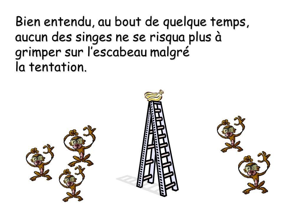 Bien entendu, au bout de quelque temps, aucun des singes ne se risqua plus à grimper sur l'escabeau malgré la tentation.