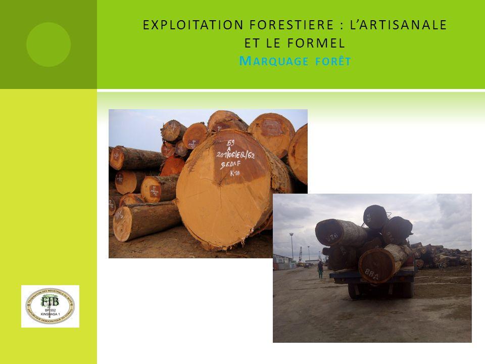 EXPLOITATION FORESTIERE : L'ARTISANALE ET LE FORMEL Marquage forêt
