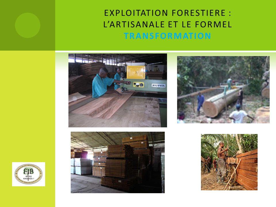 EXPLOITATION FORESTIERE : L'ARTISANALE ET LE FORMEL TRANSFORMATION
