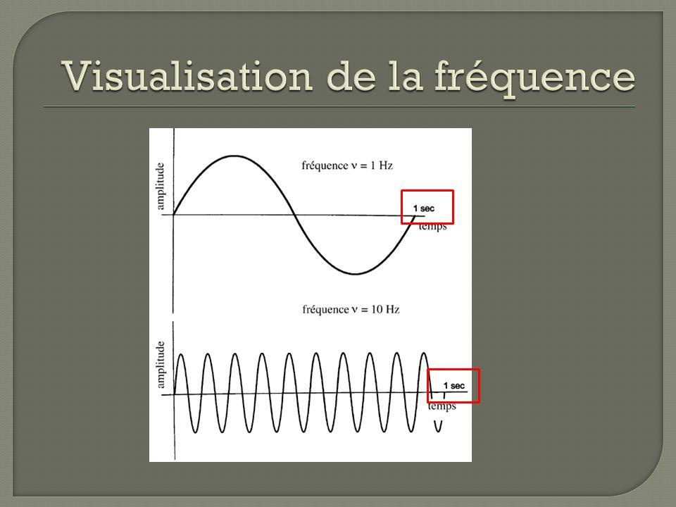 Visualisation de la fréquence