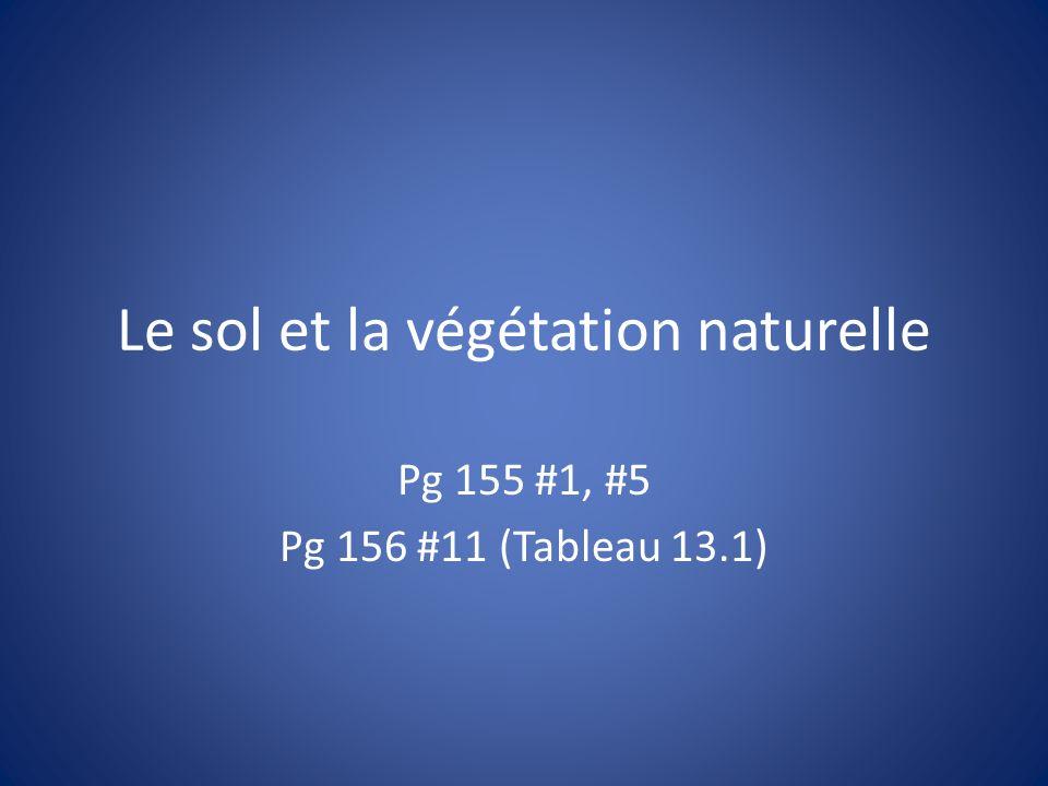 Le sol et la végétation naturelle