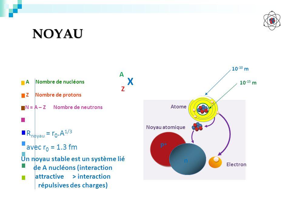 NOYAU X Rnoyau = r0.A1/3 avec r0 = 1.3 fm A Z P+
