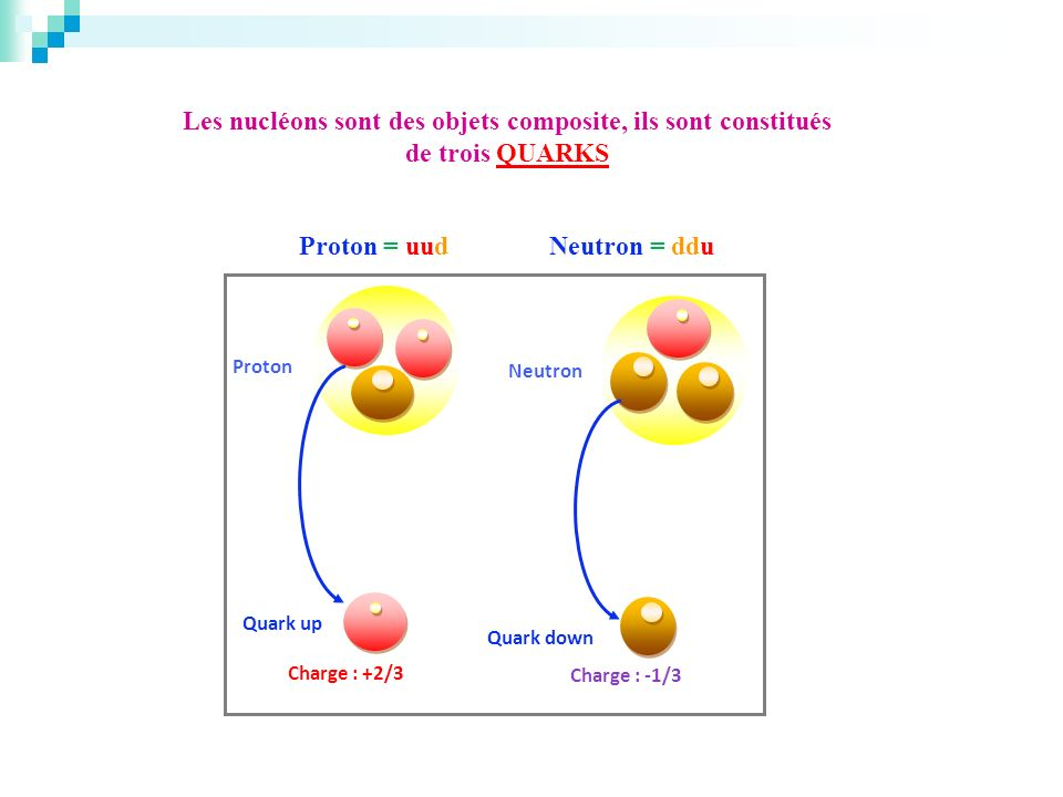 Proton = uud Neutron = ddu