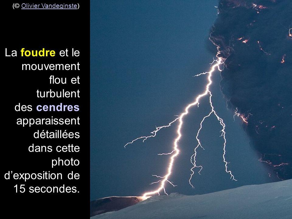 (© Olivier Vandeginste)