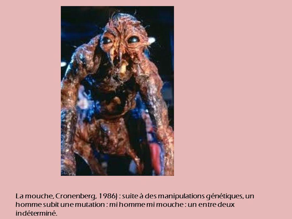 La mouche, Cronenberg, 1986) : suite à des manipulations génétiques, un homme subit une mutation : mi homme mi mouche : un entre deux indéterminé.