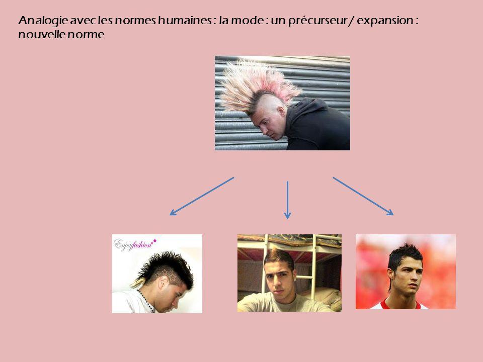 Analogie avec les normes humaines : la mode : un précurseur / expansion : nouvelle norme